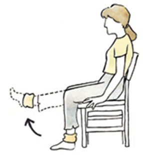 seated leg raise