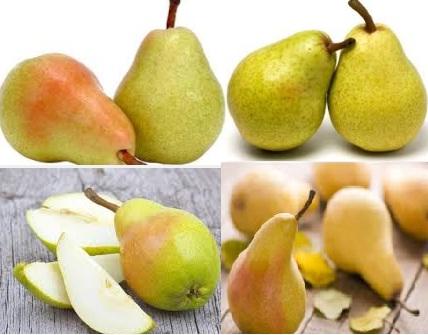 pears benefits