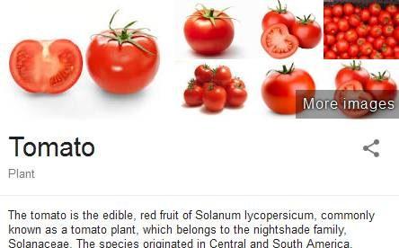 Low calories Foods to Make You Slim